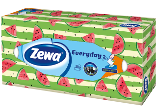Zewa Everyday Box D